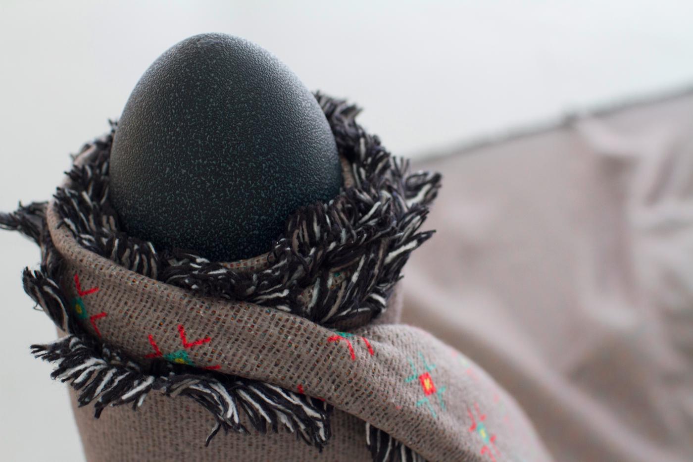 Tz-close-up-emu-egg